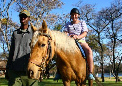 AP-Horse-lesson