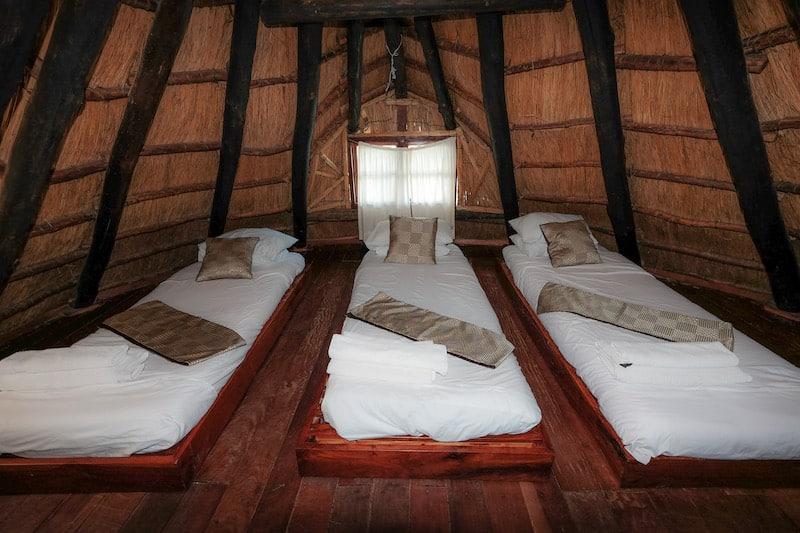 Acacia Lodge 1