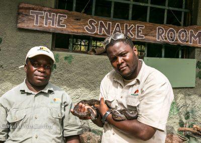 Snakes Antelope Park 1