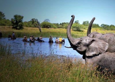 horse-safari-zimbabwe-04