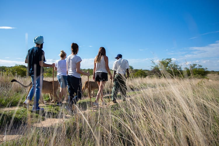 Wildlife conservation project