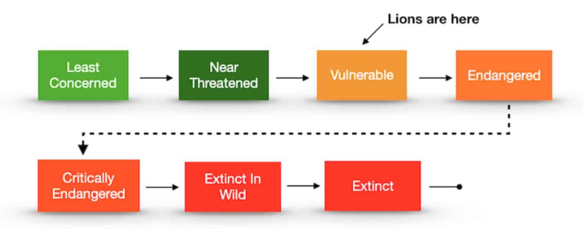 Roadmap demonstrating the how endangered lions are