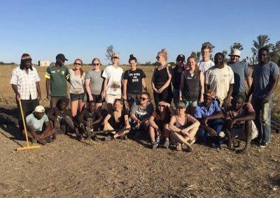 Teaching Lions Antelope Park 5